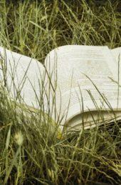 Summer Reads from Sharpe Books